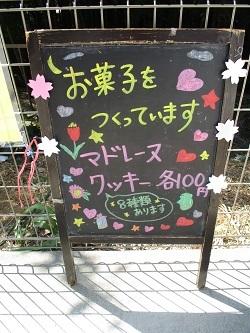 IMG_2121.JPG